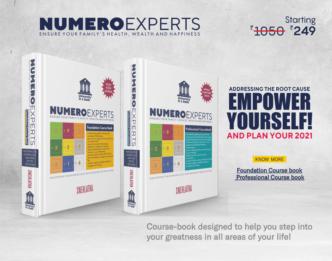 Numeroexperts Professional Course Book